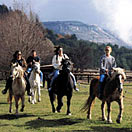 Riding makes a perfect break during your cooking holidays in Italy